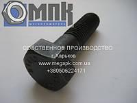 Болты высокопрочные стальные для машиностроения ГОСТ Р 52644-2006 М16х50 10. 9 ХЛ
