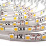 Светодиодная лента B-LED 5050-60 WW IP65 теплый белый, герметичная, 5метров, фото 3