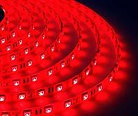 Светодиодная лента B-LED 5050-60 R IP65 красный, герметичная, 5метров, фото 1