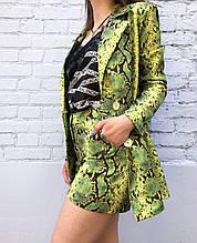 Женский костюм пиджак и шорты (змеиный принт)