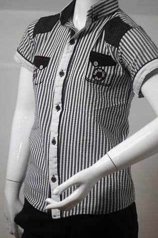 Детская рубашка в полоску для мальчика  с коротким рукавом в школу  5-8 лет, фото 2