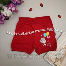 Трикотажні шорти для дівчаток оптом Туреччина р. 1-4 роки (4 шт в ростовці) бордо