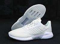 Мужские кроссовки Adidas ClimaCool  в сетку белые (ТОП реплика)