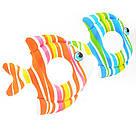 Круг надувной детский Тропические рыбки Intex 59223 81см, фото 2