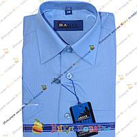 Школьные рубашки Короткий рукав (Ворот: 28- 36) vr60-4