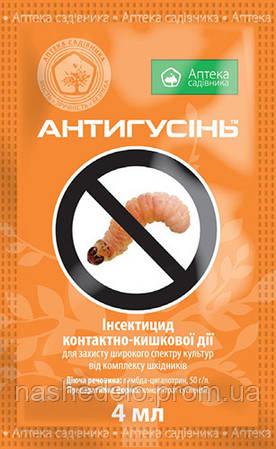Инсектицид Антигусень 4 мл. Аптека садiвника