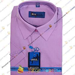 Сиреневые рубашки с Коротким рукавом (Ворот: 28- 36) (vr51-C)