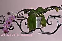 """Подставка для цветов на 7 чаш """"Мадагаскар-2"""", фото 1"""