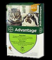 Краплі Адвантейдж (Advantage) від бліх для котів вагою до 4 кг, 0,4 мл. ціна за 1 піпетку
