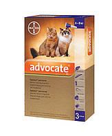 Краплі Advocate для котів і тхорів  4 -8 кг від  зараження ендо - та екто-паразитами, Bayer,3 піпетки