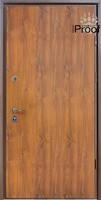Входная дверь Straj  Proof