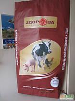 Мешки бумажные, 100х49, 5х9 см, 4-х слойные, бурые, открытые, фото 3