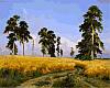Набор-раскраска по номерам Рожь. худ Шишкин Иван