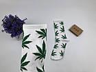 Носки HUF Plantilife - высокие -белые (зеленый лист), фото 3