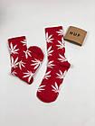 Носки HUF Plantilife - высокие - красные (белый лист), фото 4