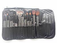 Подарок ко дню матери Набор кистей для макияжа SHANY Professional 12