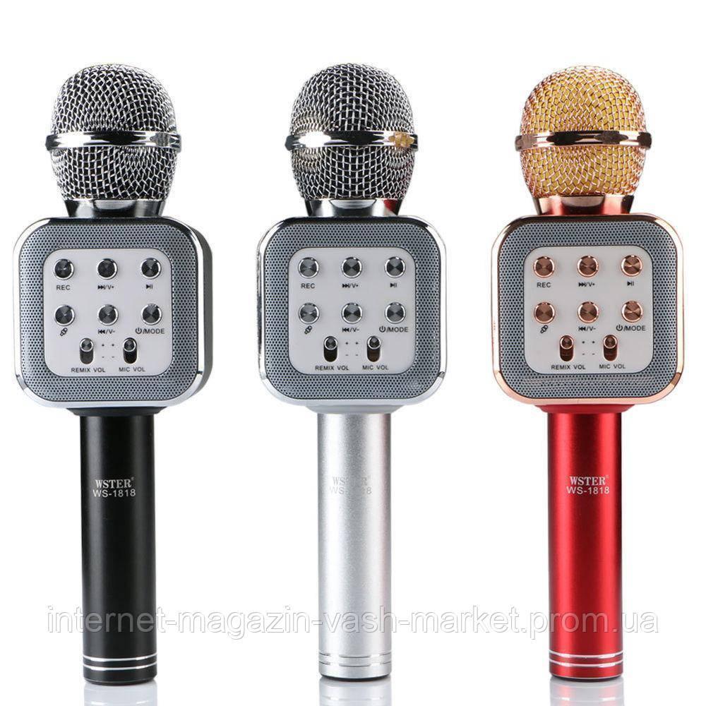 Беспроводной Bluetooth караоке-микрофон DM Karaoke WS1818, Новинка