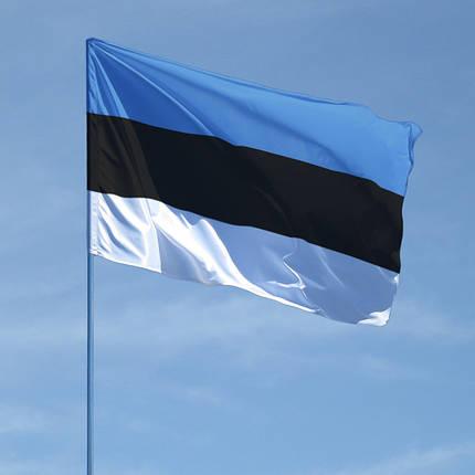 Флаг Эстонии, фото 2