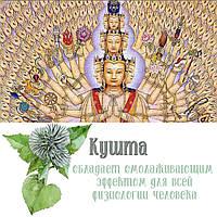Кушта - растение природы Духа