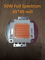 Фито светидиод 50 Вт, 32-34 В, 45*45 mill. Мультиспектр для роста растений 400-840nm, фитоспектр.