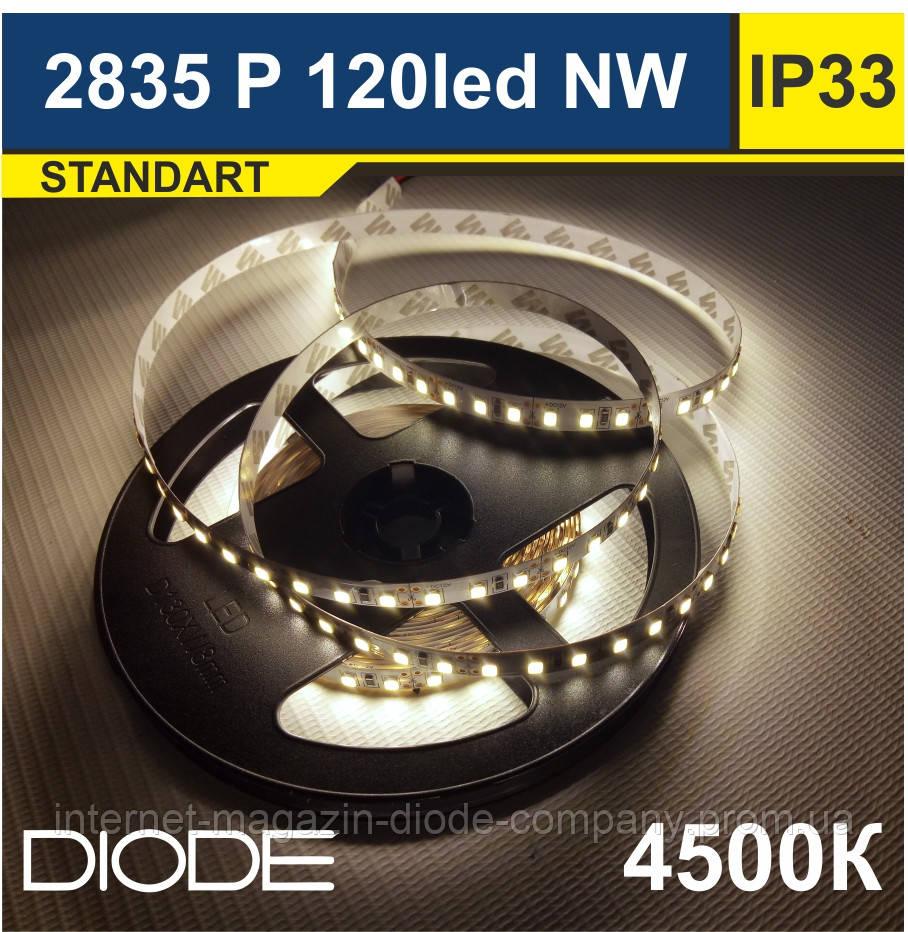 Світлодіодна стрічка SMD 2835 / 120 шт/м, 4500К (Нейтральний Білий)