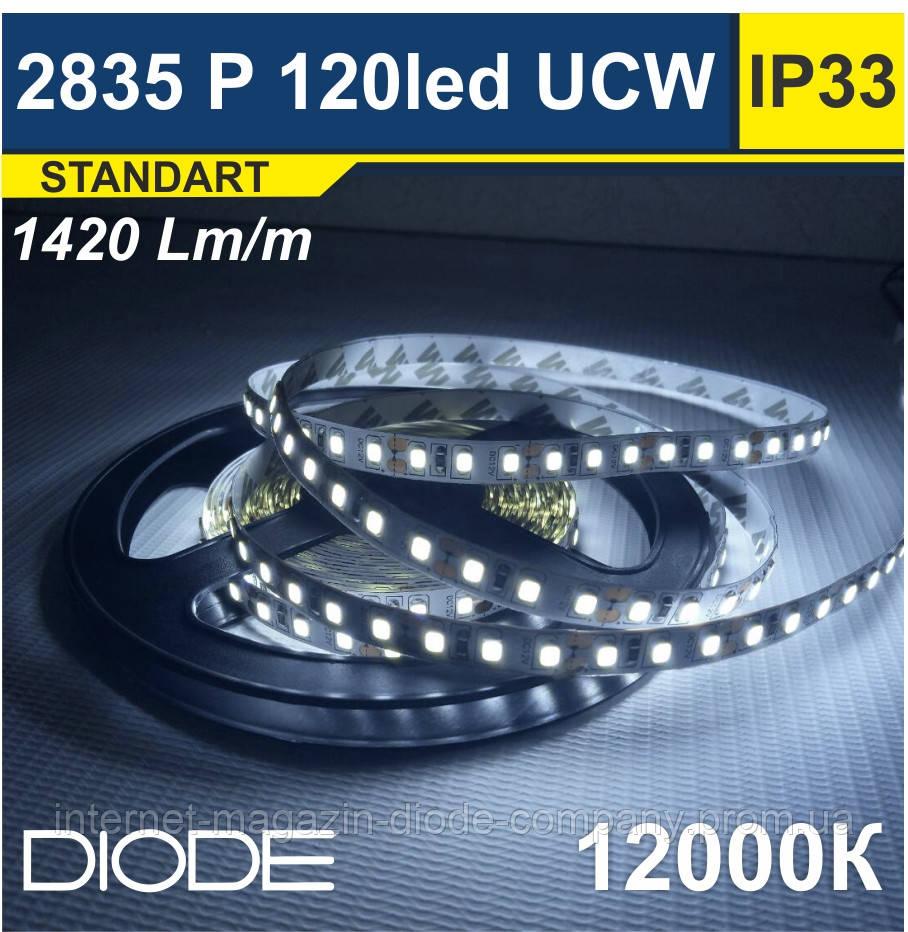 Світлодіодна стрічка SMD 2835, 120 шт/м, 12000К (Ультрахолодний Белый)