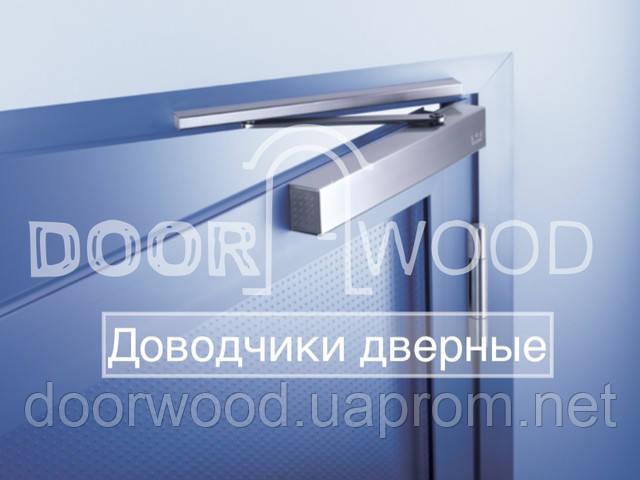 доводчики дверные купить в магазине doorwood