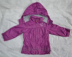 Ветровка детская для девочки фиолетовая (QuadriFoglio, Польша)