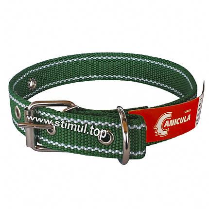 Ошейник двойной 45 мм х 870 мм капроновый / усиленный / с кольцом / двухслойный / ошийник / для собак, фото 2