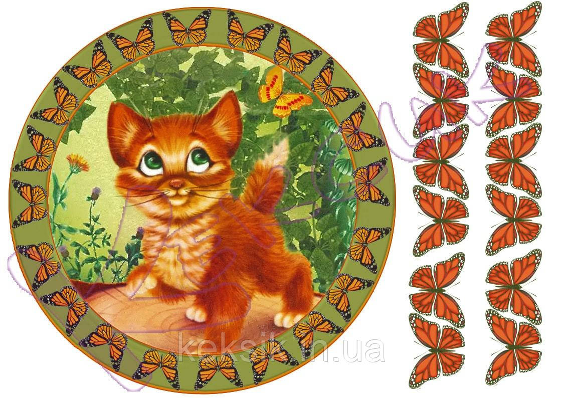 Вафельная картинка котик