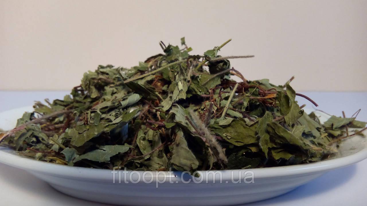 Земляника лесная(трава)0.5 кг