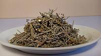 Полынь горькая(трава)