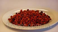 Рябина красная(плоды)
