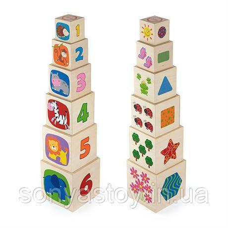Набор кубиков для строительства и изучения, 6 шт, 1+
