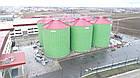 Металлический силос для хранения зерна NL 20/16 на 3000т, фото 6
