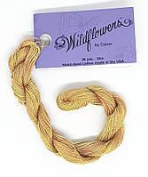 Caron Wildflowers Spice 123 Нить ручного окрашивания