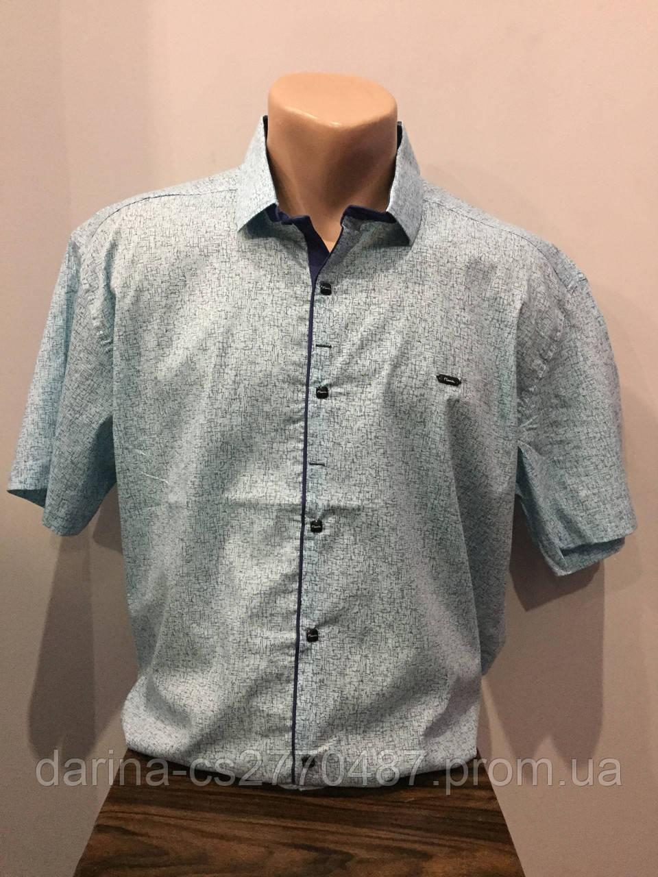 Мужская рубашка батал с коротким рукавом 4XL,5XL