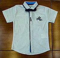 Модная рубашка-шведка  для мальчика рост 98 см
