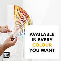 Краска для школьной доски - какие бывают цвета?