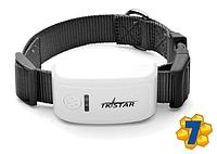 Ошейник GPS Tracker Трекер для Собак, Охоты ТКSTAR, Модель: ТК-909, Вес 46г, Защита IP65