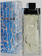 Roberto Cavalli - Roberto Cavalli Man (2003) - Туалетная вода 50 мл - Редкий аромат, снят с производства