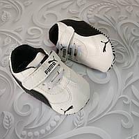Пинетки кроссовки Puma, фото 1