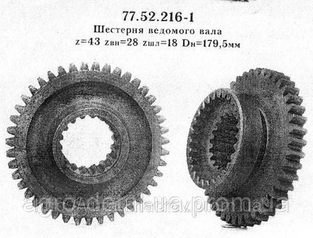 Шестерня 77.52.216 ведомого вала трактора ДТ-75