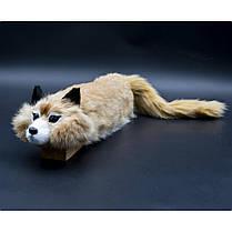 Tricky the Fox Spring Animal, фото 2