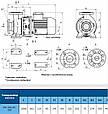 Консольный насос КМ 100-65-200, фото 3