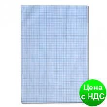 Масштабно-координатная бумага (миллиметровка) А4
