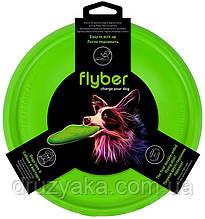 Флайбер -  літаюча тарілка для собак і їх власників
