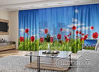 """3D - Фото Шторы и тюль """"Маки и пшеница"""" (шторы 2,5м*2,9м, тюль 2,5м*3,0м)"""
