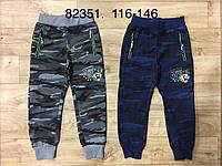 Спортивные брюки на мальчиков оптом, Grace , 116-146 рр.
