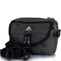 9295acdccbd8 Сумка спортивная Onepolar Мужская спортивная сумка ONEPOLAR (ВАНПОЛАР)  W3172-grey